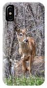 Sertoma Park Deer IPhone Case
