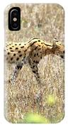 Serval Cat - Kenya IPhone Case