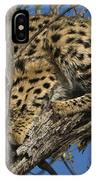Serval IPhone Case