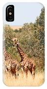 Seven Masai Giraffes IPhone Case