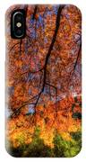 Shades Of Autumn IPhone Case