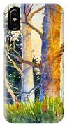 Shadow Patterns II IPhone Case