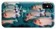 Shadowfin Soldierfish IPhone X Case