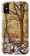 Shadows In The Urban Jungle IPhone Case