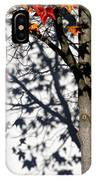 Shadows Of Fall IPhone Case