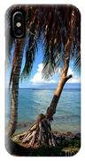 Shady Palm Beach IPhone Case