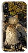 Shaggy Ink Caps - Coprinus Comatus IPhone Case