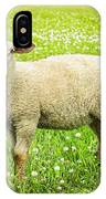 Sheep In Summer Meadow IPhone Case