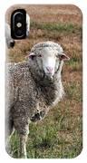 Sheep Portrait IPhone Case