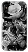 Shell Collection 3 IPhone Case