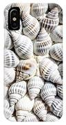 Shells IPhone Case