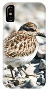 Shorebird Beauty IPhone Case