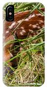 Shy Fawn In Meadow IPhone Case