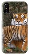 Siberian Tiger Cub Guarding Mom Wildlife Rescue IPhone Case