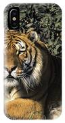 Siberian Tiger Endangered Species Wildlife Rescue IPhone Case