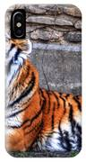 Siberian Tiger Nap Time IPhone Case