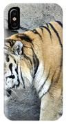 Siberian Tiger Panthera Tigris Altaica Usa IPhone Case