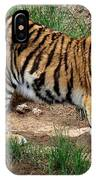 Siberian Tiger - Standing IPhone Case