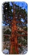 Sierra Pine IPhone Case