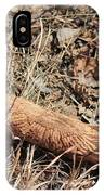 Sign In The Wood II IPhone Case