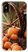 Signs Of Fall IPhone X Case
