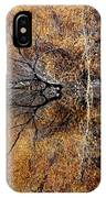 Silent Reflections IPhone Case