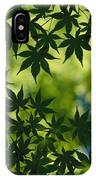 Silhouette Of Japanese Maple Leaves IPhone Case