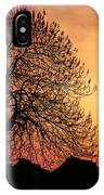 Silhouette Of Tree IPhone Case