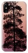 Silhouette Tree At Sunrise IPhone Case