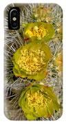 Silver Cholla Cactus IPhone Case