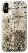 Silver Paint Texture IPhone Case