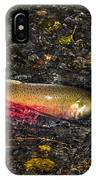 Silver Salmon Spawning IPhone Case