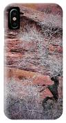 Silver Tree And Red Rocks IPhone Case