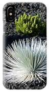 Silversword Plant IPhone Case