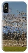 Skagit Snow Geese Liftoff IPhone Case