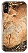 Sleeping And Smiling Pig IPhone Case