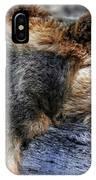 Sleeping Bear IPhone Case