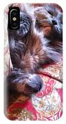 Sleeping In Today IPhone Case