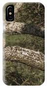 Sleeping Leopard IPhone Case