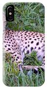 Sleepy Cheetah IPhone Case