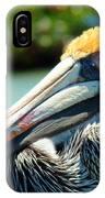 Sleepy Pelican IPhone Case