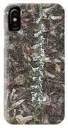 Slender Ladies Tresses Orchids IPhone Case