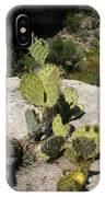 Small Cactus IPhone Case