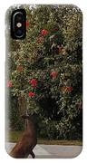 Smell The Flowers IPhone X Case