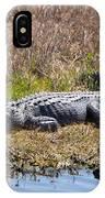 Smiling Gator IPhone Case