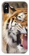 Smiling Tiger Endangered Species Wildlife Rescue IPhone Case