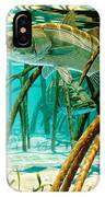 Snook In The Mangroves IPhone Case