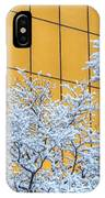 Snow And Golden Glass IPhone Case