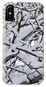 Snow Branches 2-1-15 IPhone Case