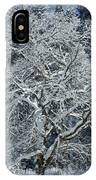 Snow Covered Winter IPhone Case